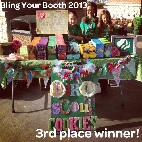 girl scouts of san jacinto council blog 2013 bling your