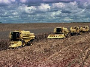 Produção agrícola aumenta e PIB recua