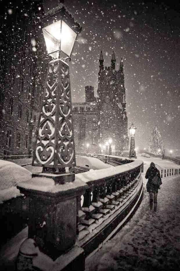 Las más bellas imágenes del invierno.