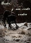 "NEW BOOK: ""Sentir, y nun sentir sentire"""