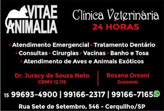 VITAE ANIMALIA Clínica Veterinária 24HS