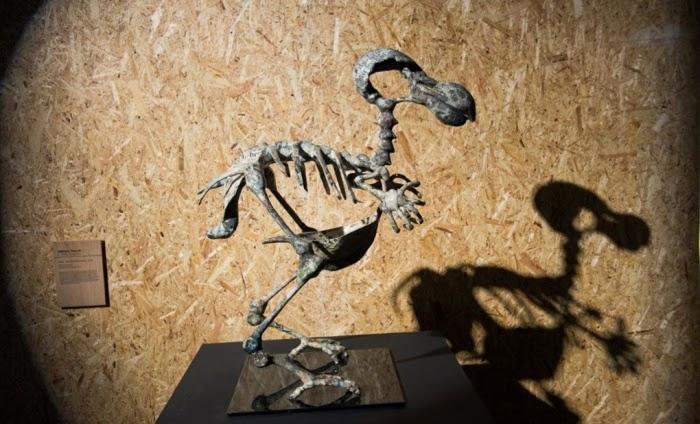 Abigail Fallis: Dodo, Death Of The Author.