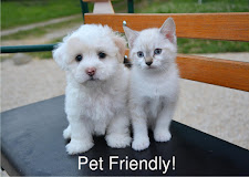 2 Pets / 35 Pounds Max