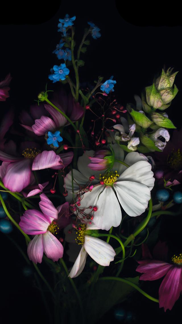 iPhone 6 Plus Flowers Wallpaper
