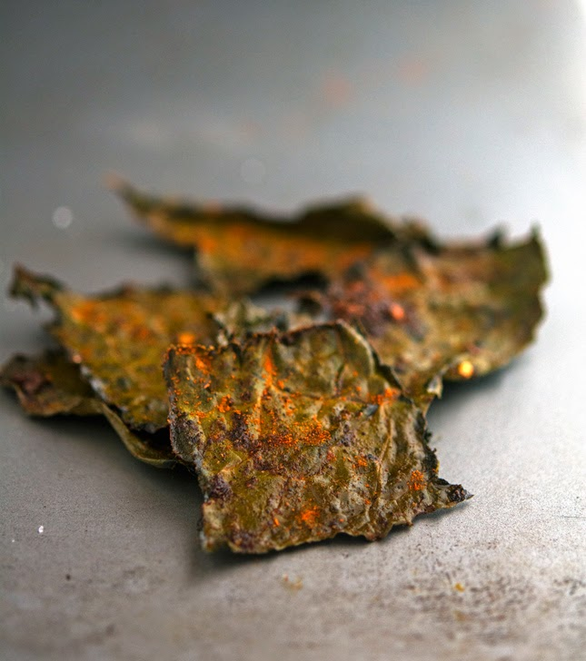 Smoked Paprika and Chili Kale Chips
