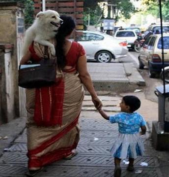 Sayang Anjing Atau Anak