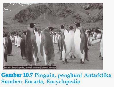 Karakteristik Benua Antarktika