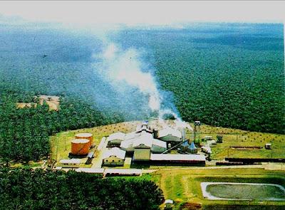 Lowongan Kerja Pabrik Sawit, Lowongan Kerja Pabrik Sawit Riau, Lowongan Kerja Pabrik Sawit Sumsel, Lowongan Kerja Pabrik Sawit Palembang