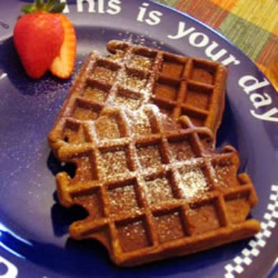 Gingerbread Waffles With Hot Chocolate Sauce Recipe — Dishmaps