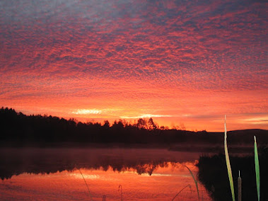 Sunrise Over Shelburne Pond