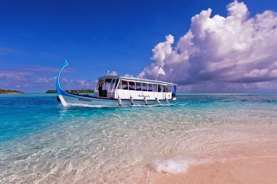 8. In Harmony with Nature. Maldives by Jenny Rainbow