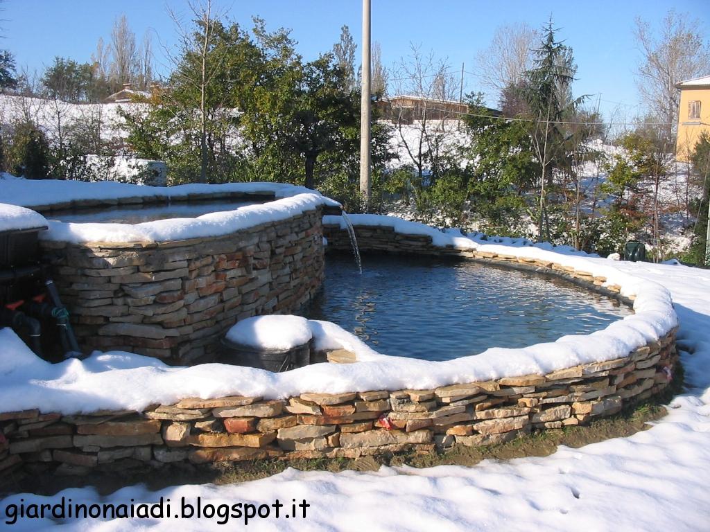 Il giardino delle naiadi laghetti a dicembre for Pulizia fondo laghetto