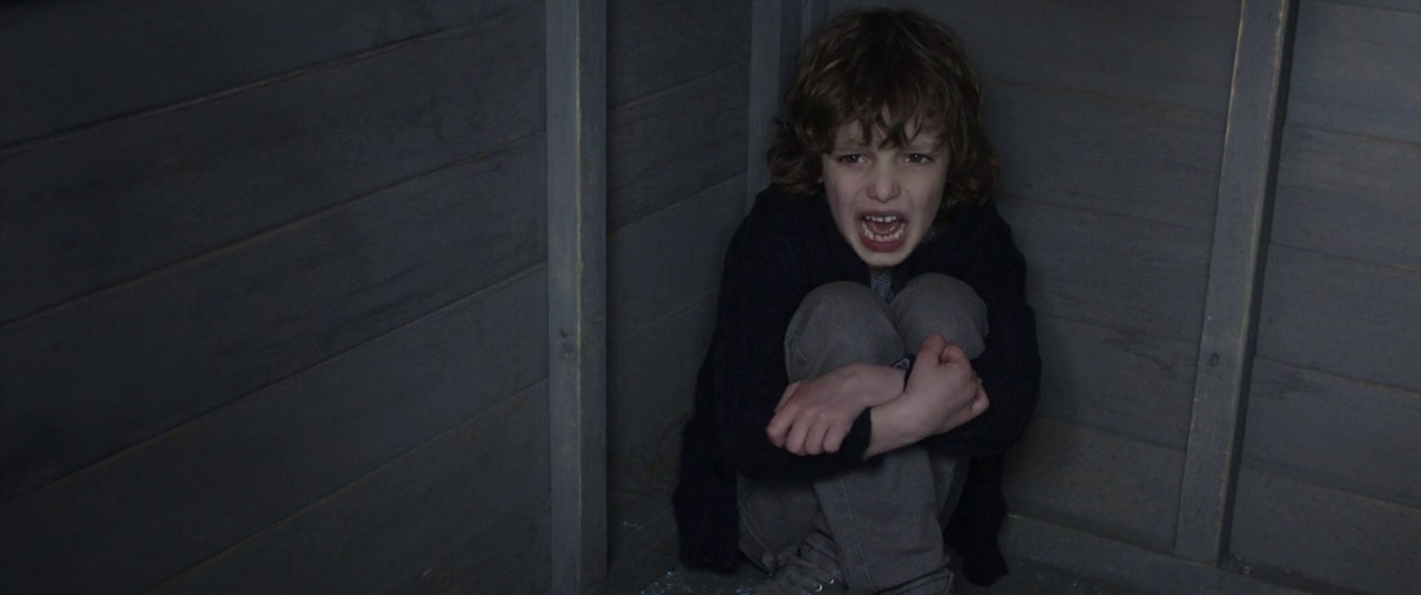The Babadook Australian horror film 2014 samuel treehouse
