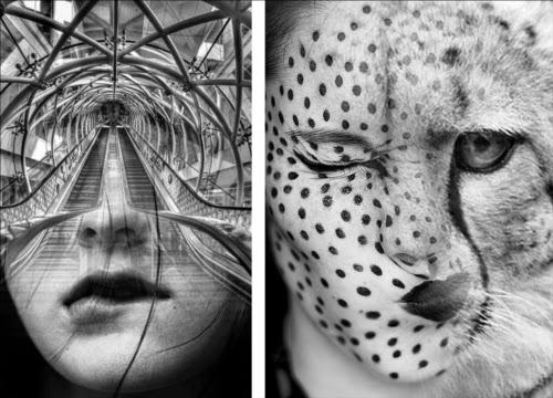 00-Front-Page-Antonio-Mora-Black-&-White-Photography-www-designstack-co