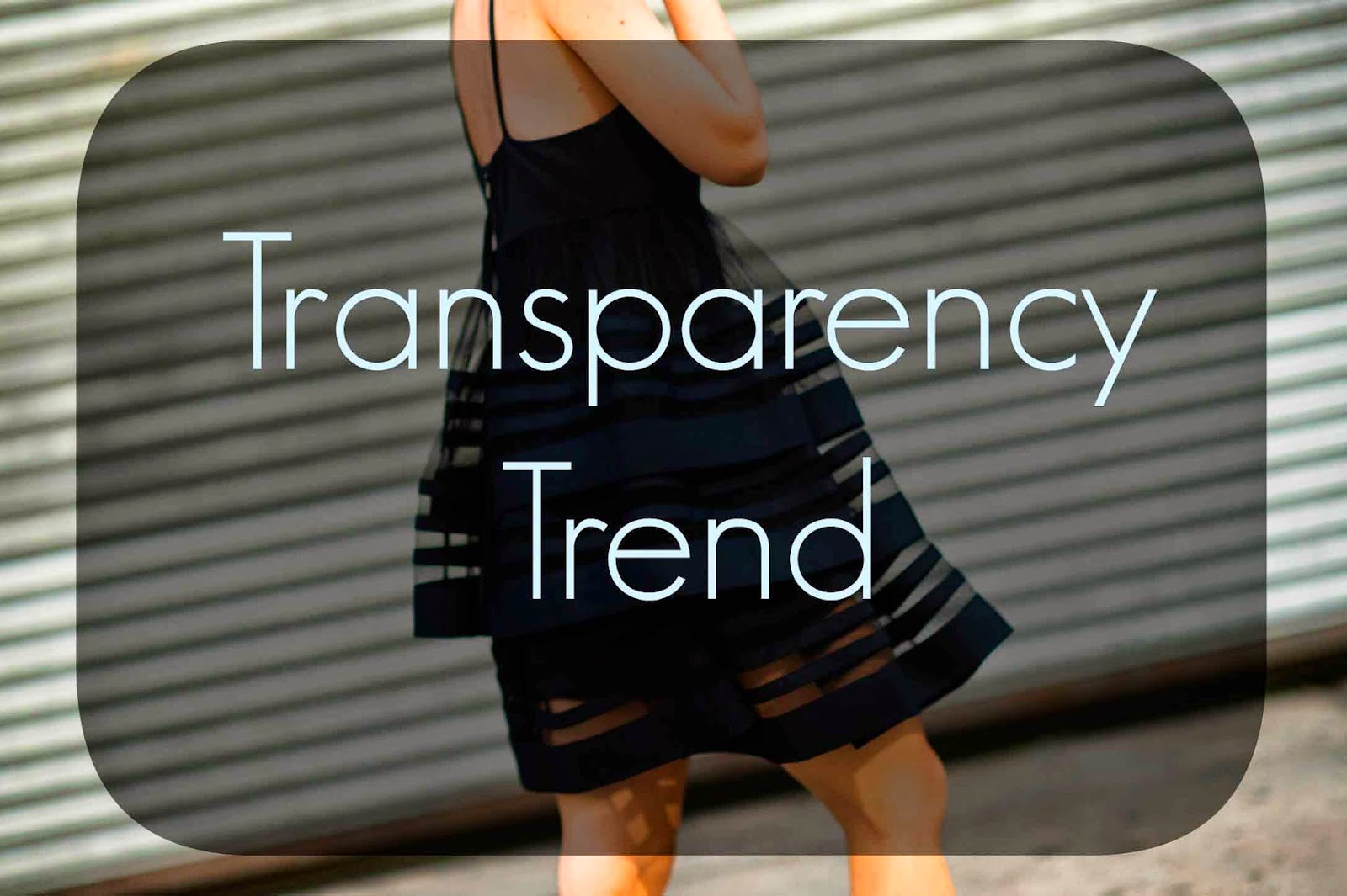 transparency trend