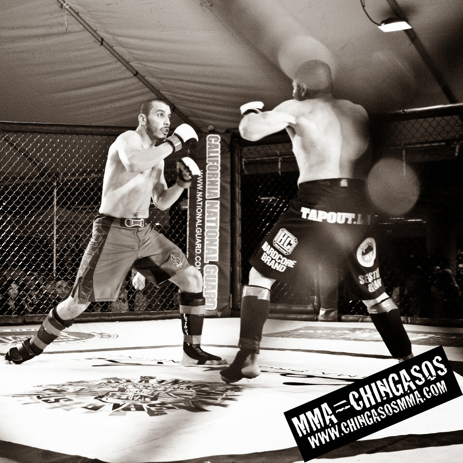 MMA Fights Los Angeles Punch