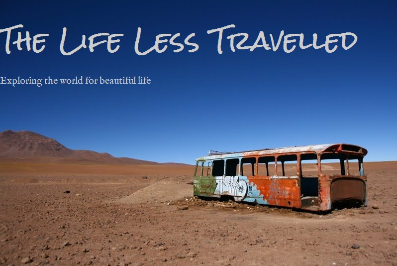 The Life Less Travelled