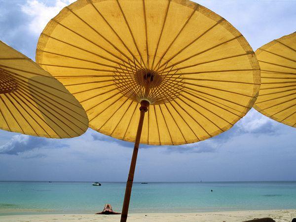 Seaside Style Beckoning Beach Umbrellas