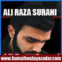 http://ishqehaider.blogspot.com/2013/11/ali-raza-surani-nohay-2014.html