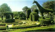 Czy twój ogród przynudza?