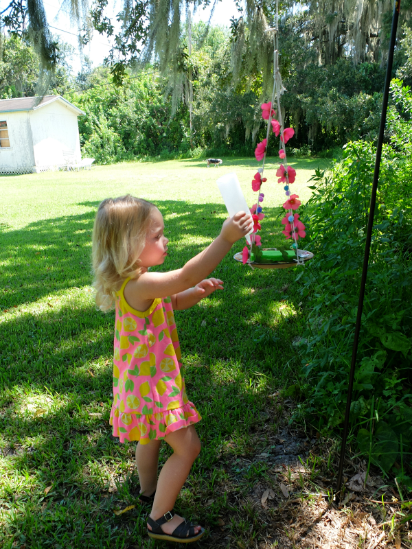 Sweet Turtle Soup - Summer Bucket List: Make a Butterfly Feeder