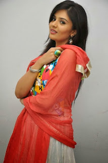 Actress Sree Mukhi Pictures in Salwar Kameez at Prema Ishq Kadhal Audio Success Meet Function  0021