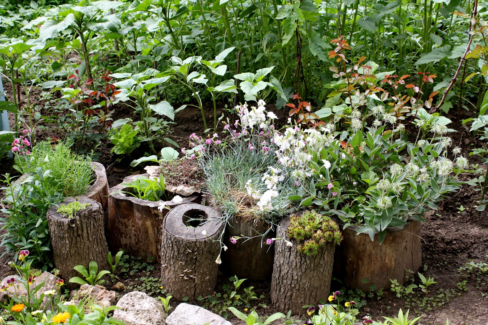 Подделки своими руками фото для сада