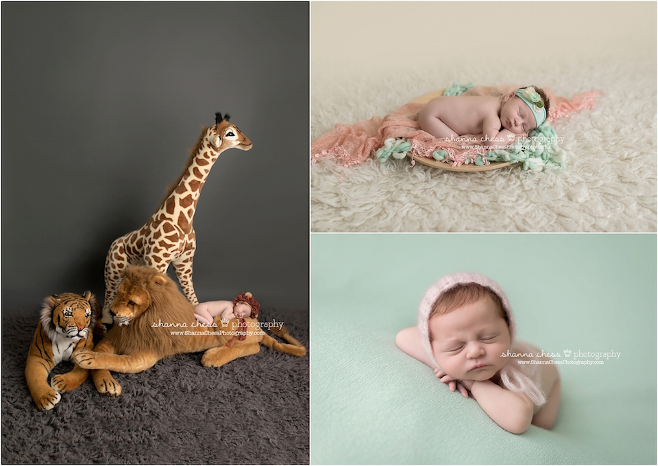 eugene springfield oregon newborn photographer