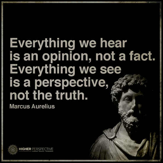 Perspective Quotes | Everything We See Is A Perspective Not The Truth 101 Quotes