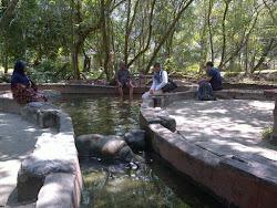 Hot Springs, Sg. Klah, Perak.