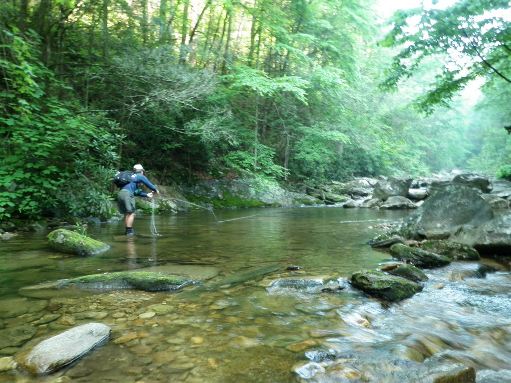 Nc mountain news september 2012 for Fly fishing cherokee nc
