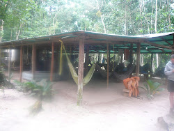 Hammock shed and cook tent, adjacent -- Angel Falls base camp