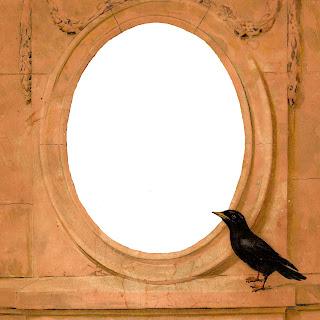 frame digital crow image