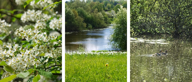 Bæredygtig park i Nordsjælland