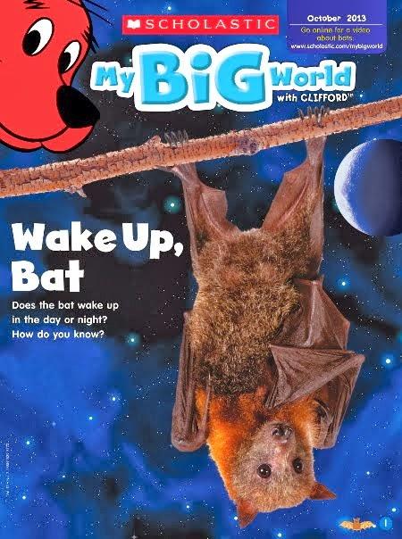 Magazine Bats
