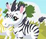 Zebra Care