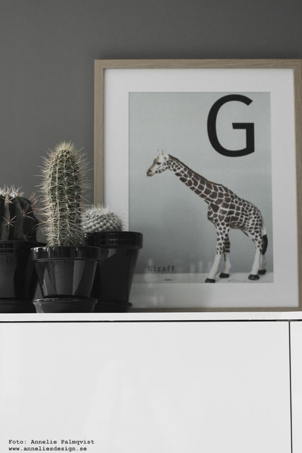 giraff, tavla, tavlor, giraffer, barntavla, barntavlor, barnposters, poster, posters, print, prints, annelies design & interior, anneliesdesign, interior, webbutik, webbutiker, webshop, kaktus, kaktusar, barnrum, bokstavstavla, bokstavstavlor, bokstäver, bokstav, text,