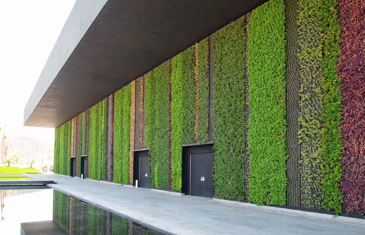 Hablemos de plantas c mo hacer jardines hidrop nicos for Materiales para un muro verde