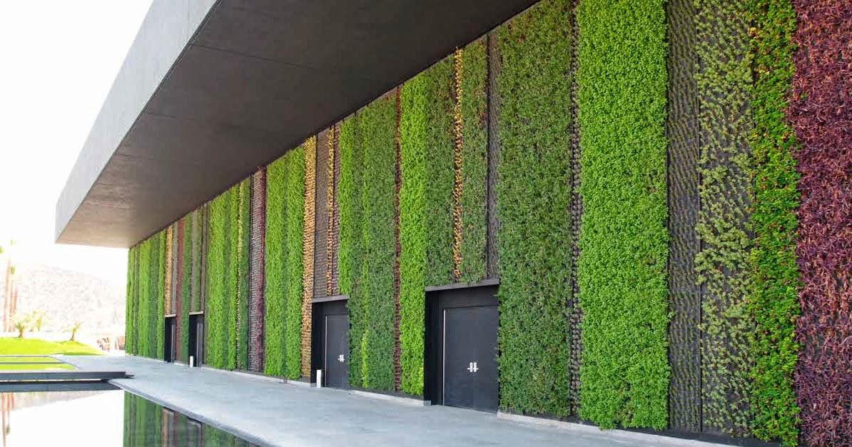 Hablemos de plantas c mo hacer jardines hidrop nicos for Tu jardin con enanitos acordes