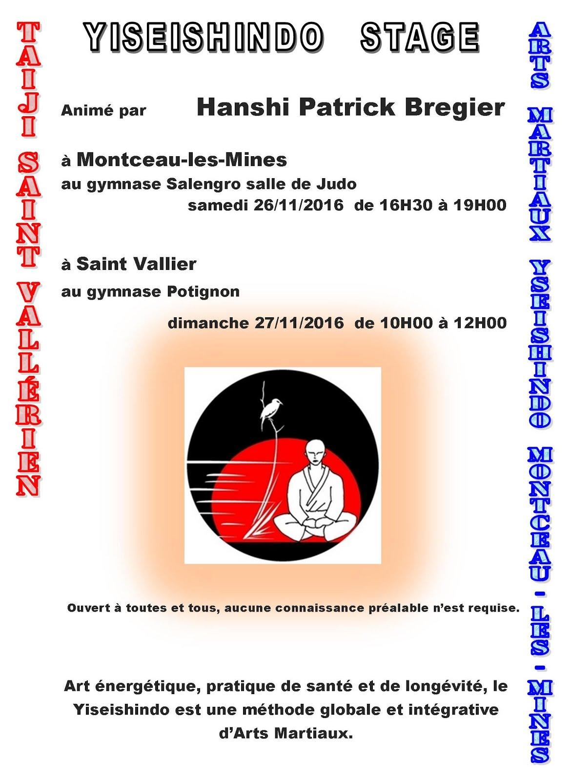 stage Yiseishindo Montceau/Saint Vallier