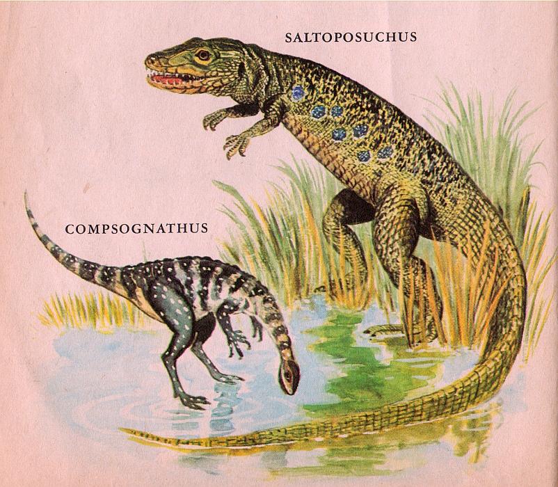 ... of Chasmosaurs: Vintage Dinosaur Art: Dinosaurs (a Little Golden Book