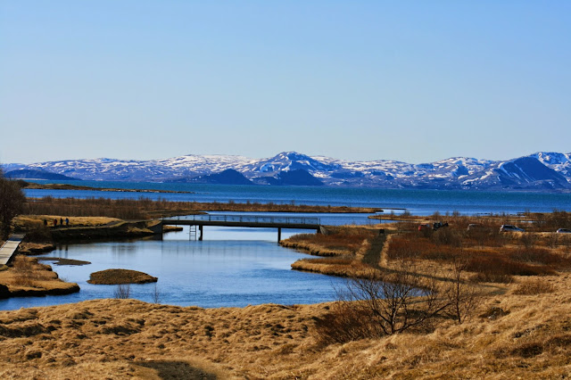 largest-lake-iceland