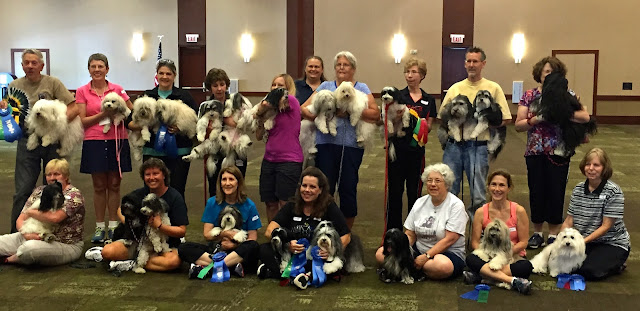 2015 Havanese National Specialty agility