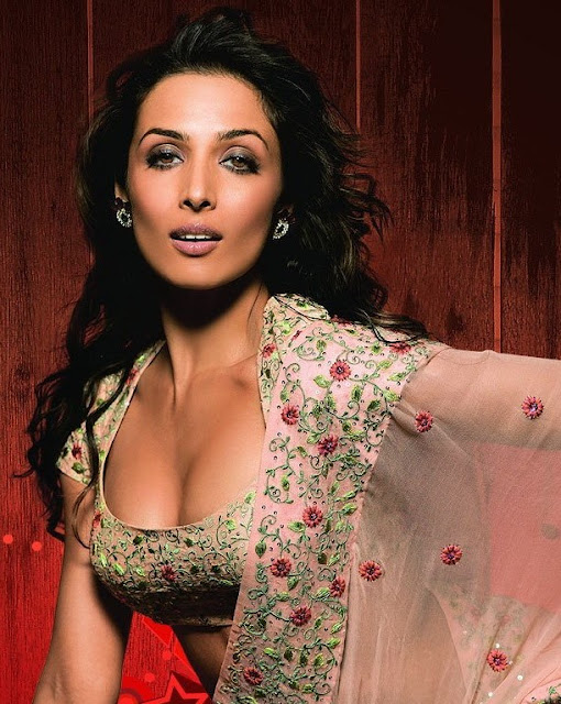 Malaika Arora Actress Hot Pics