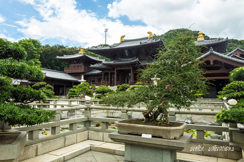 Chi Lin Nunnery, Diamond Hill, Hong Kong | Svelte Salivations