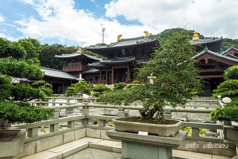 Nan Lian Garden, Hong Kong | Svelte Salivations