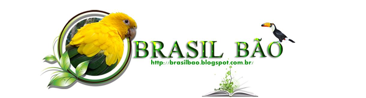 Brasil Bão