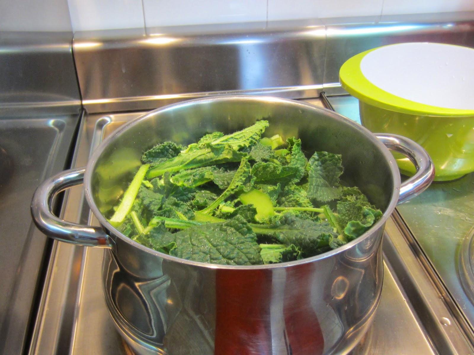 Escuela jardineria zaragoza colecci n de fotos - Escuela de cocina zaragoza ...