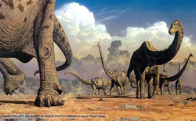 Dinosaurs: Why People Collect Fossils