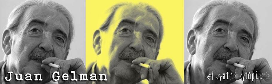 El bueno de Gelman